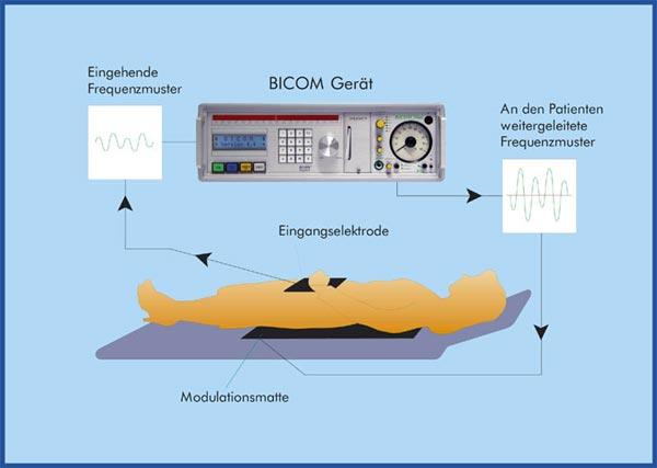Funktionsweise Bioresonanz
